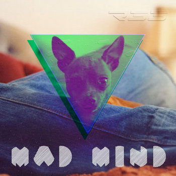 MadMind cover art