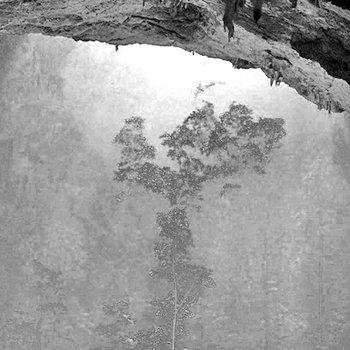 Mavis Wald (w/Merinde) cover art
