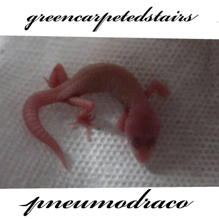Pneumo Draco cover art