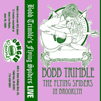 The Flying Spiders in Brooklyn cover art