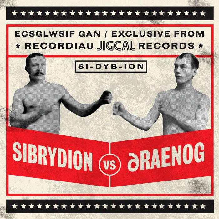 Sibrydion v Draenog cover art