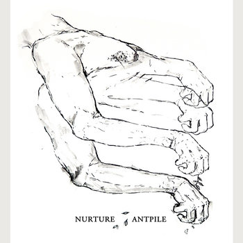 Nurture/Antpile Split cover art