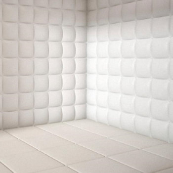 The Padded Room cover art