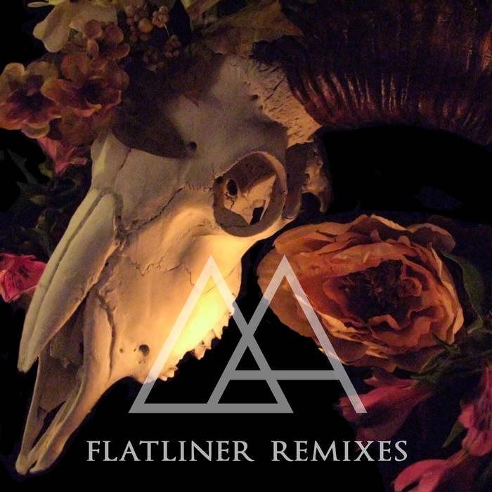 FLATLINER Remixes cover art