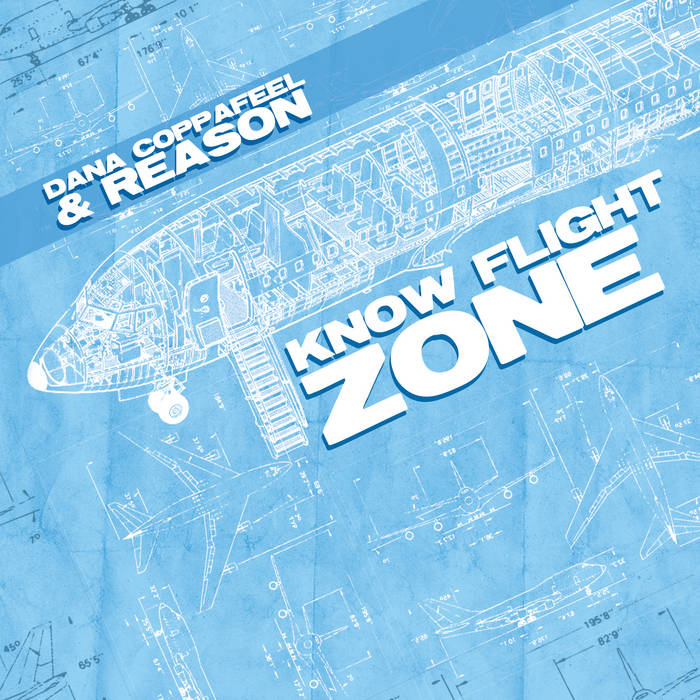Know Flight Zone cover art