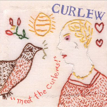 Meet the Curlews cover art