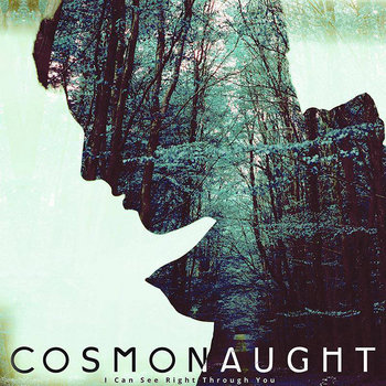 I Can See Right Through You cover art