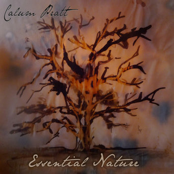 Essential Nature cover art