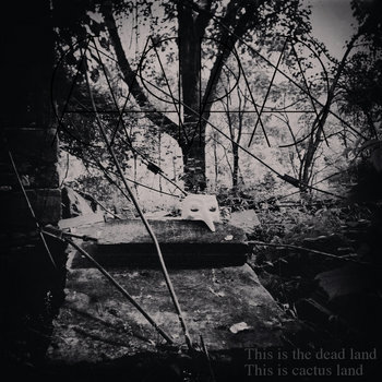 This is the Dead Land This is Cactus Land cover art