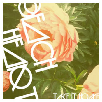 Take It Home cover art
