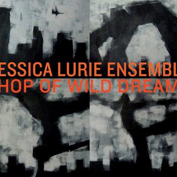 Shop of Wild Dreams cover art