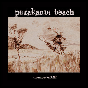 Purakanui Beach cover art