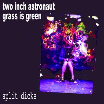 Split Dicks cover art