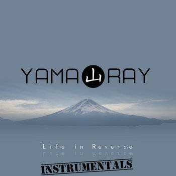 The instrumentals cover art