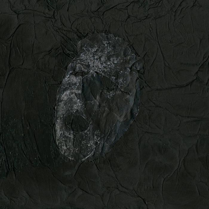 Gnawed / Swollen Organs - Split cover art