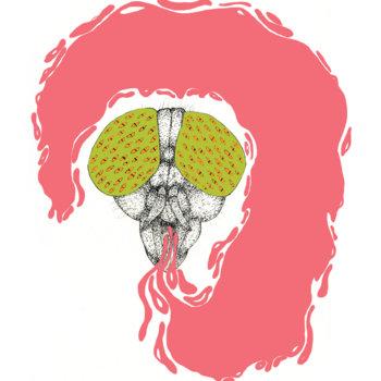 Horsefly cover art