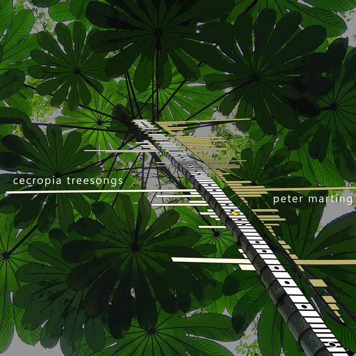 Cecropia Treesongs cover art