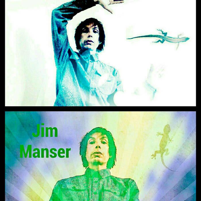 the chameleon cover art