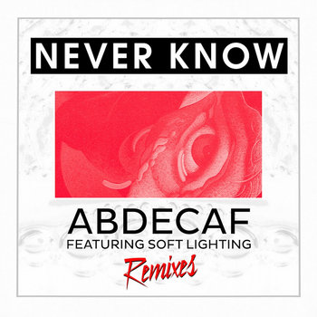 Never Know Remix EP cover art