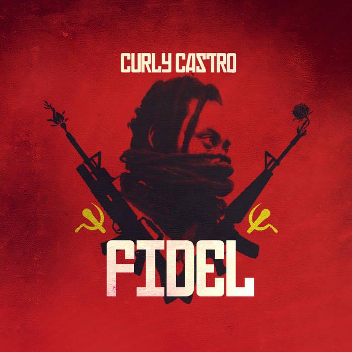 FIDEL cover art