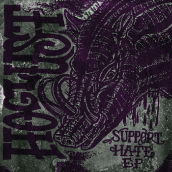 Support Hate cover art