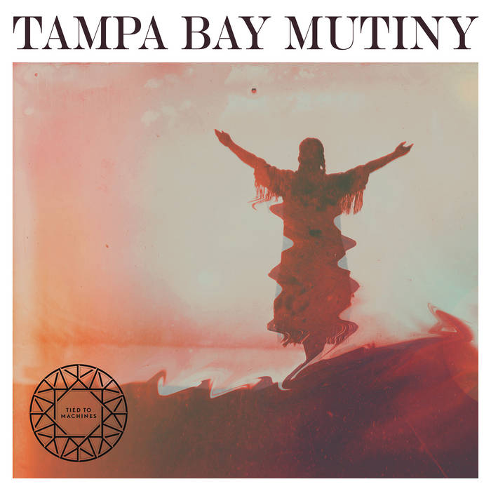 Tampa Bay Mutiny cover art