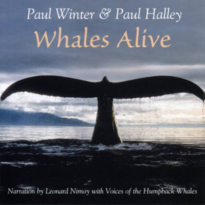 Whales Alive cover art
