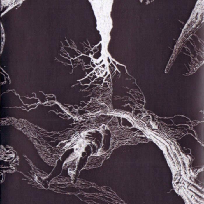 Perennis cover art