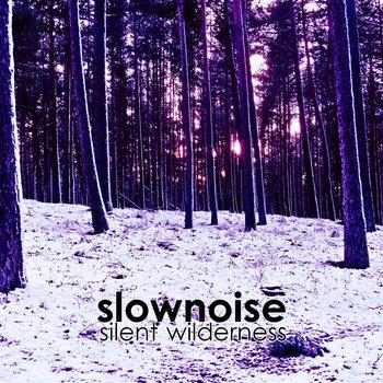 Slownoise - Silent Wilderness cover art