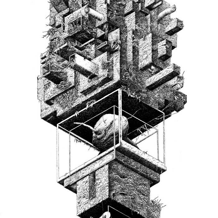 DUCH TORNADA (Instant Classic/Milieu L'Acephale, 2015) cover art