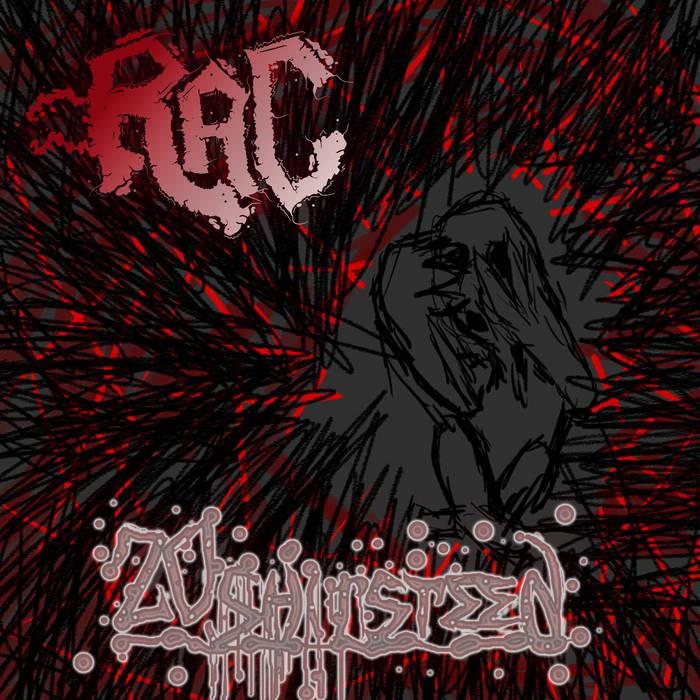 20Shitsteen cover art