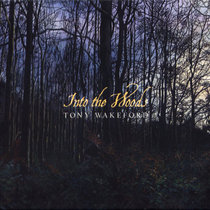Into the Woods cover art