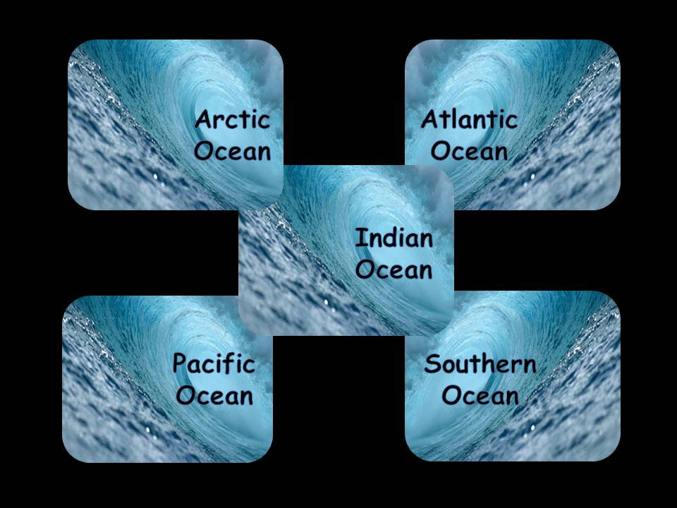 The 5 Oceans cover artWhat Are The 5 Oceans