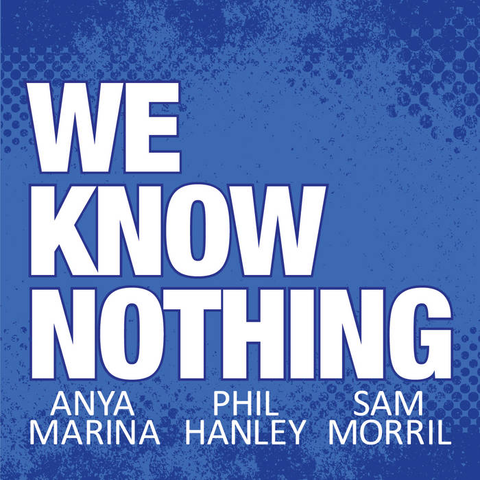 We Know Nothing Podcast Theme Song cover art
