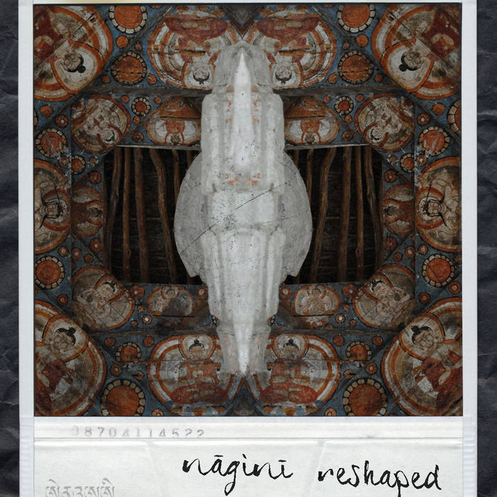 Nāginī Reshaped cover art