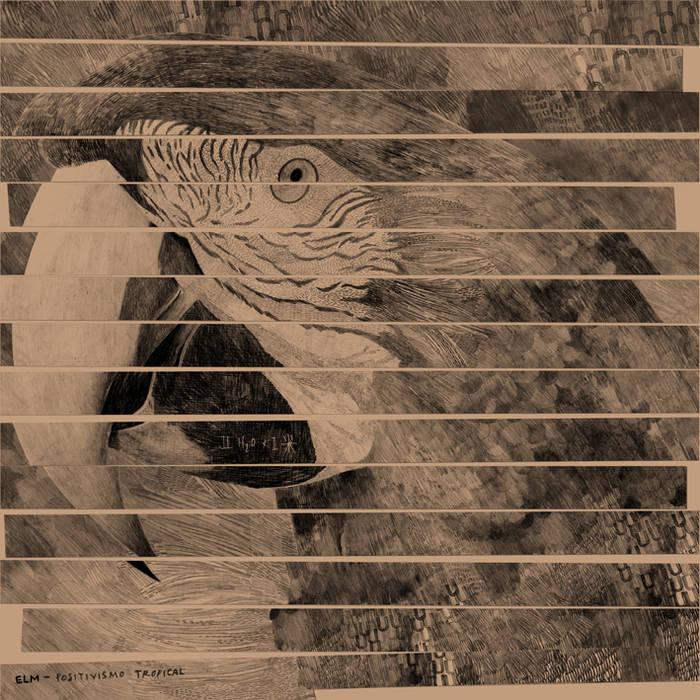 Positivismo Tropical (LP) cover art