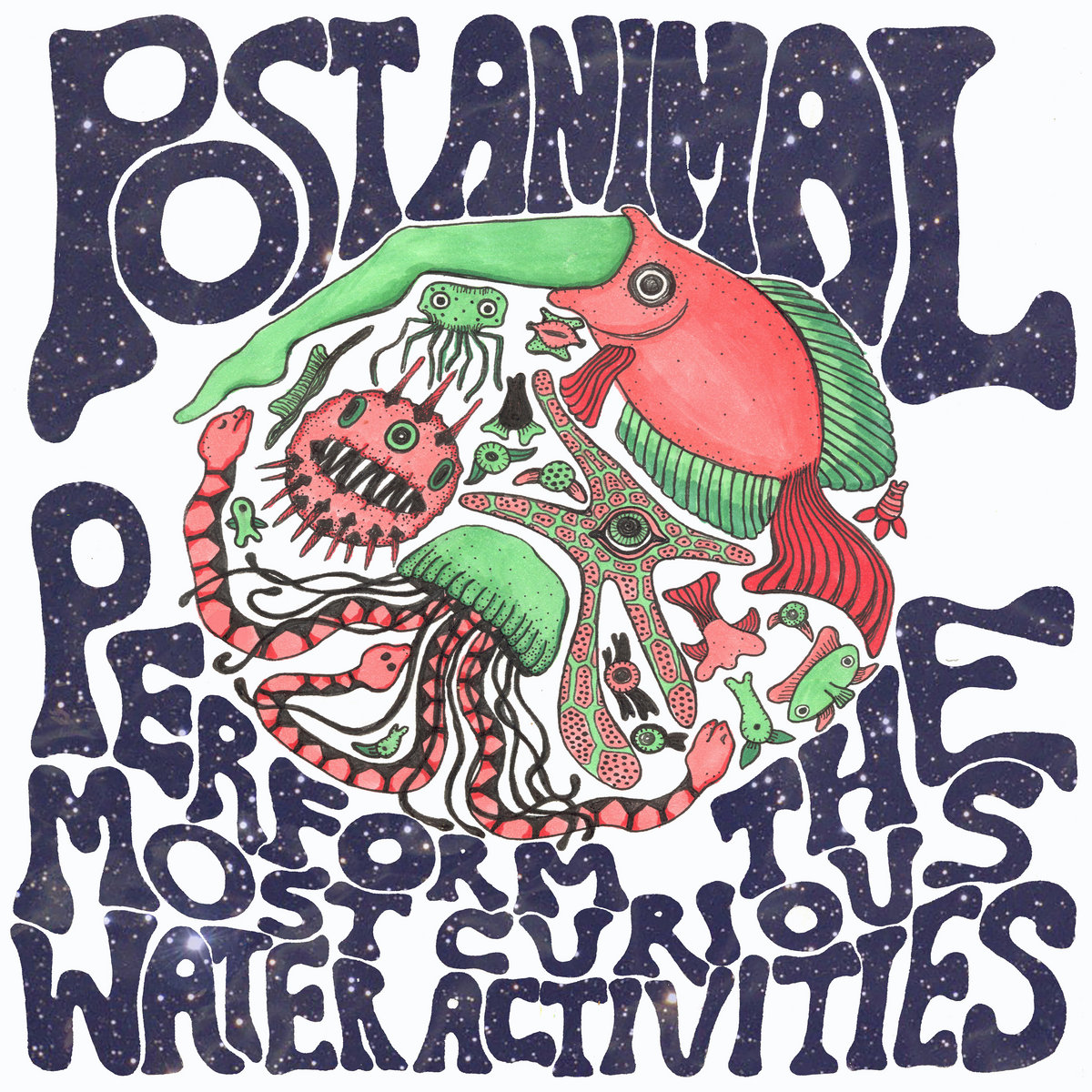 Album Review Post Animal Most Curious Water Activities