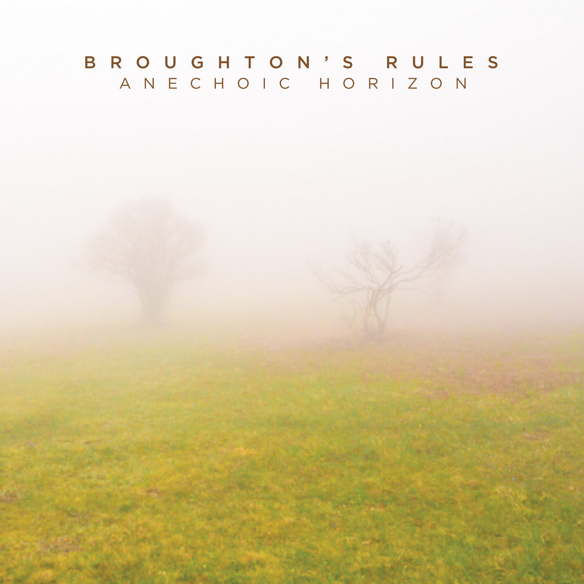 Broughton's Rules - Anechoic Horizon (2014)