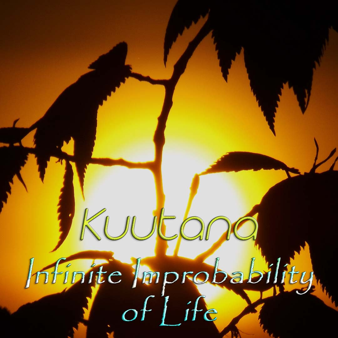 https://kuutana.bandcamp.com/track/infinite-improbabilities-of-life