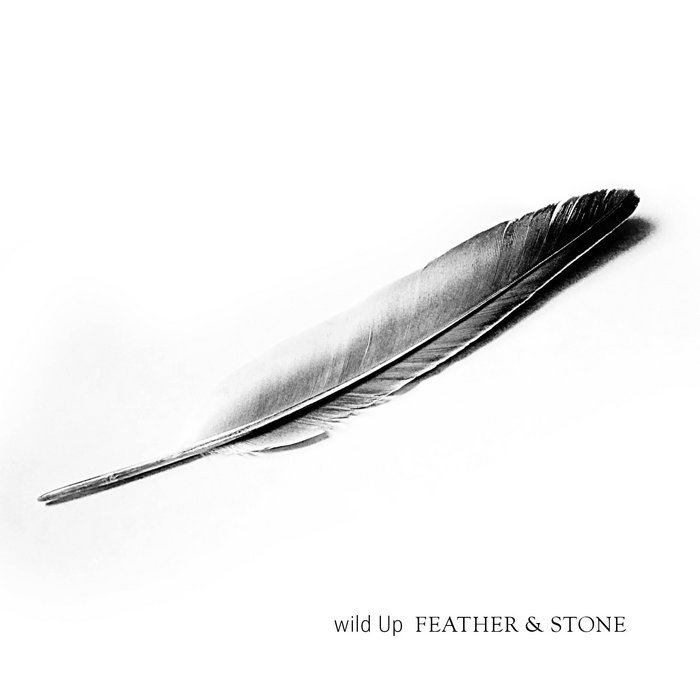 wild Up // FEATHER & STONE cover art