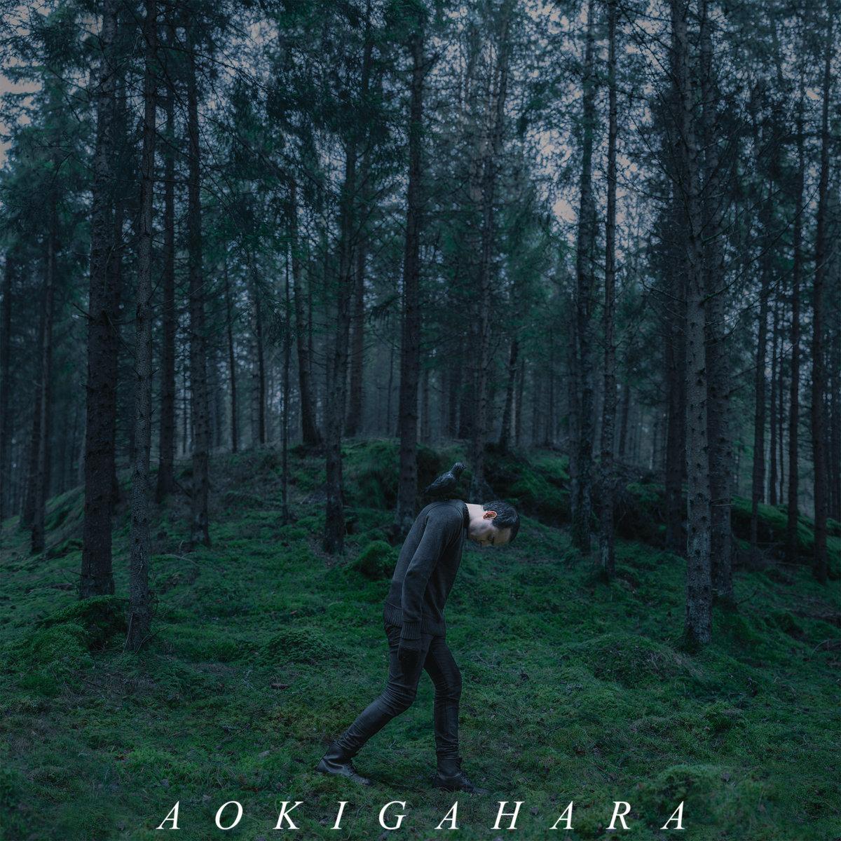 aokigahara | aokigahara: https://aokigaharacult.bandcamp.com