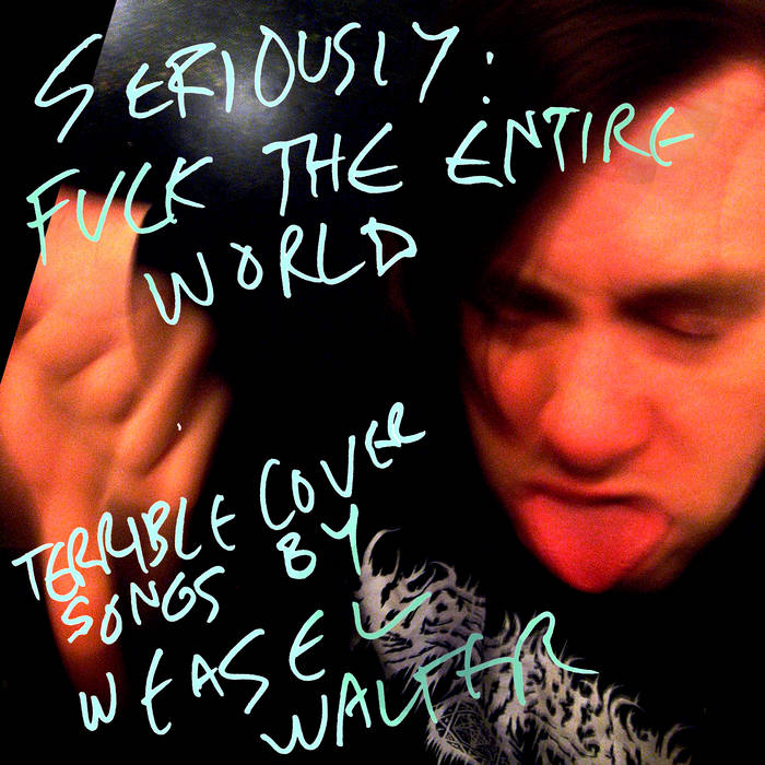Seriously: Fuck The Entire World cover art
