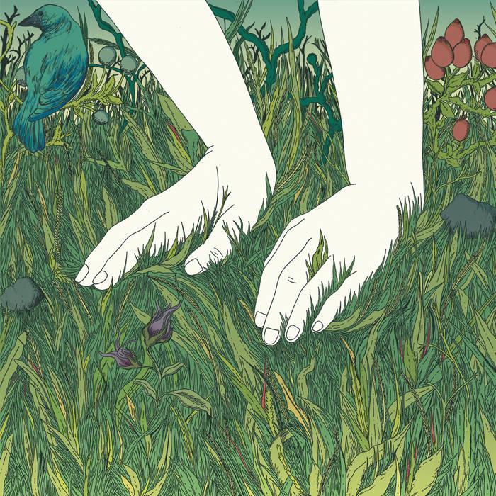 El Manto de la Especie cover art