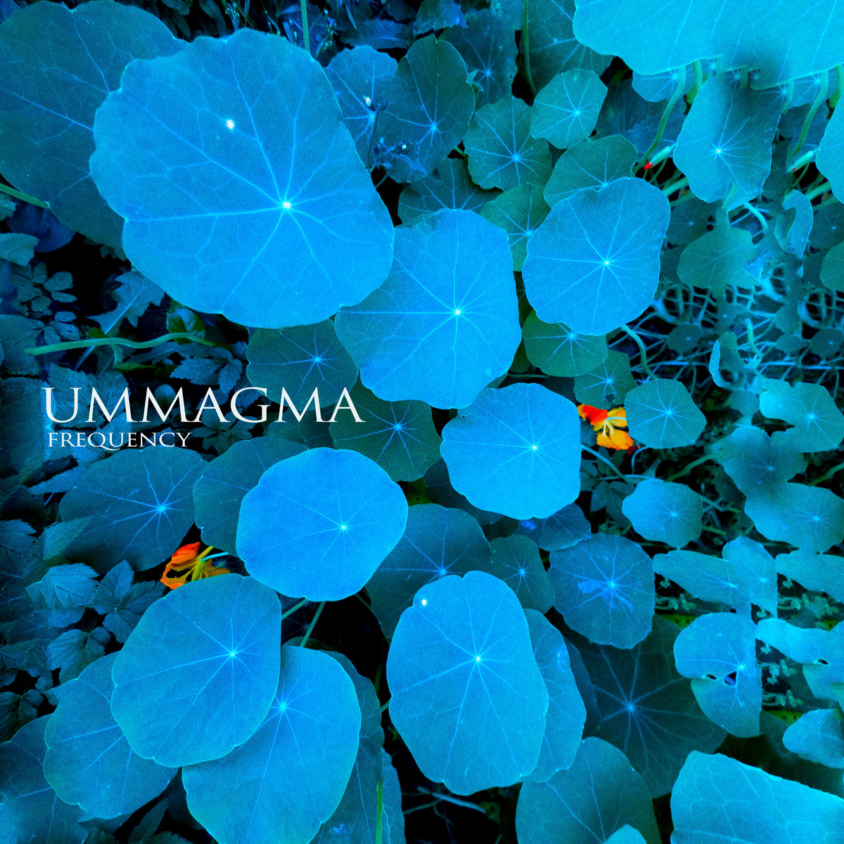 Ummagma artwork
