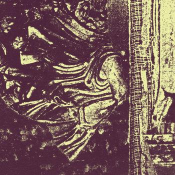 Marshstepper cover art