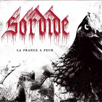 La France a peur cover art