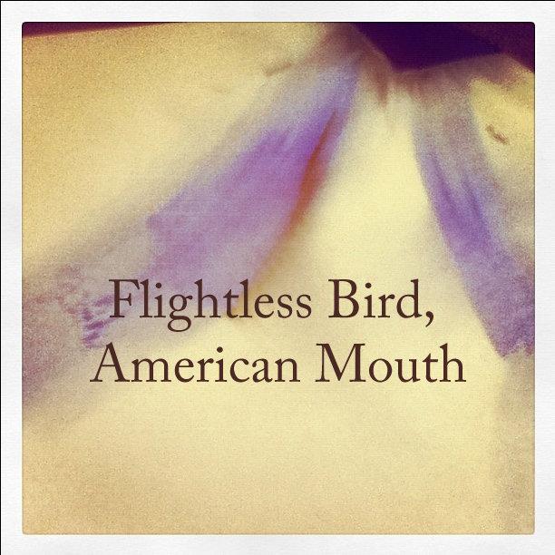 Flightless Bird American Mouth Cover 70