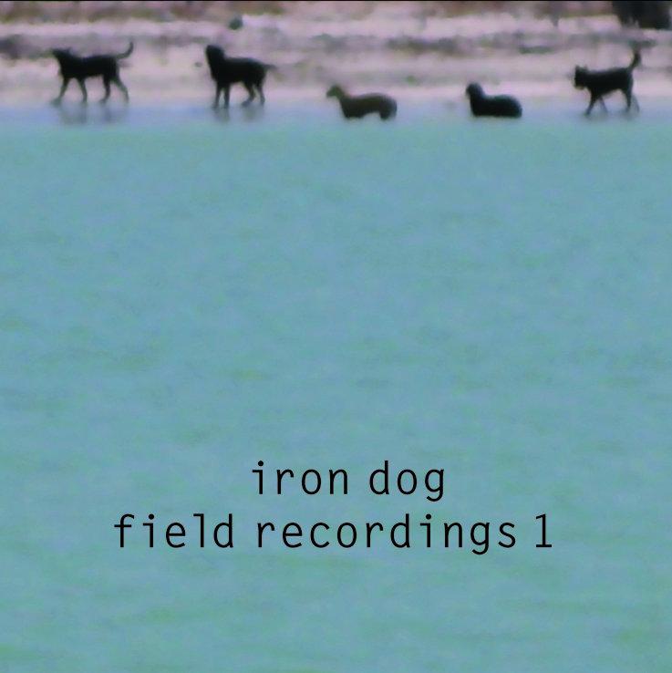 Album Iron Dog: Field Recordings 1 by Sarah Bernstein