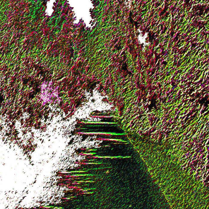 [BNx07] Subjective Purity cover art