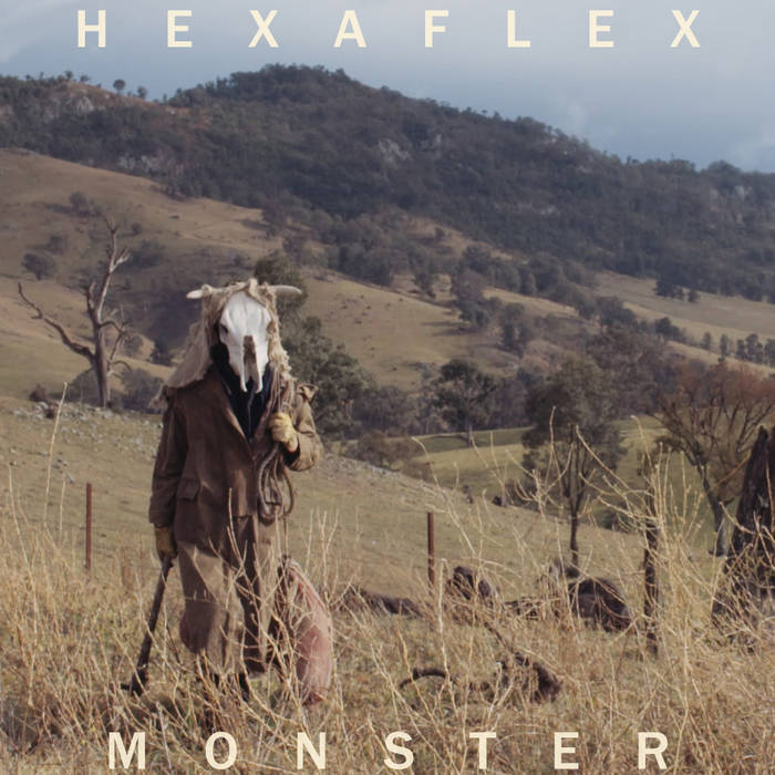 HEXAFLEX cover art